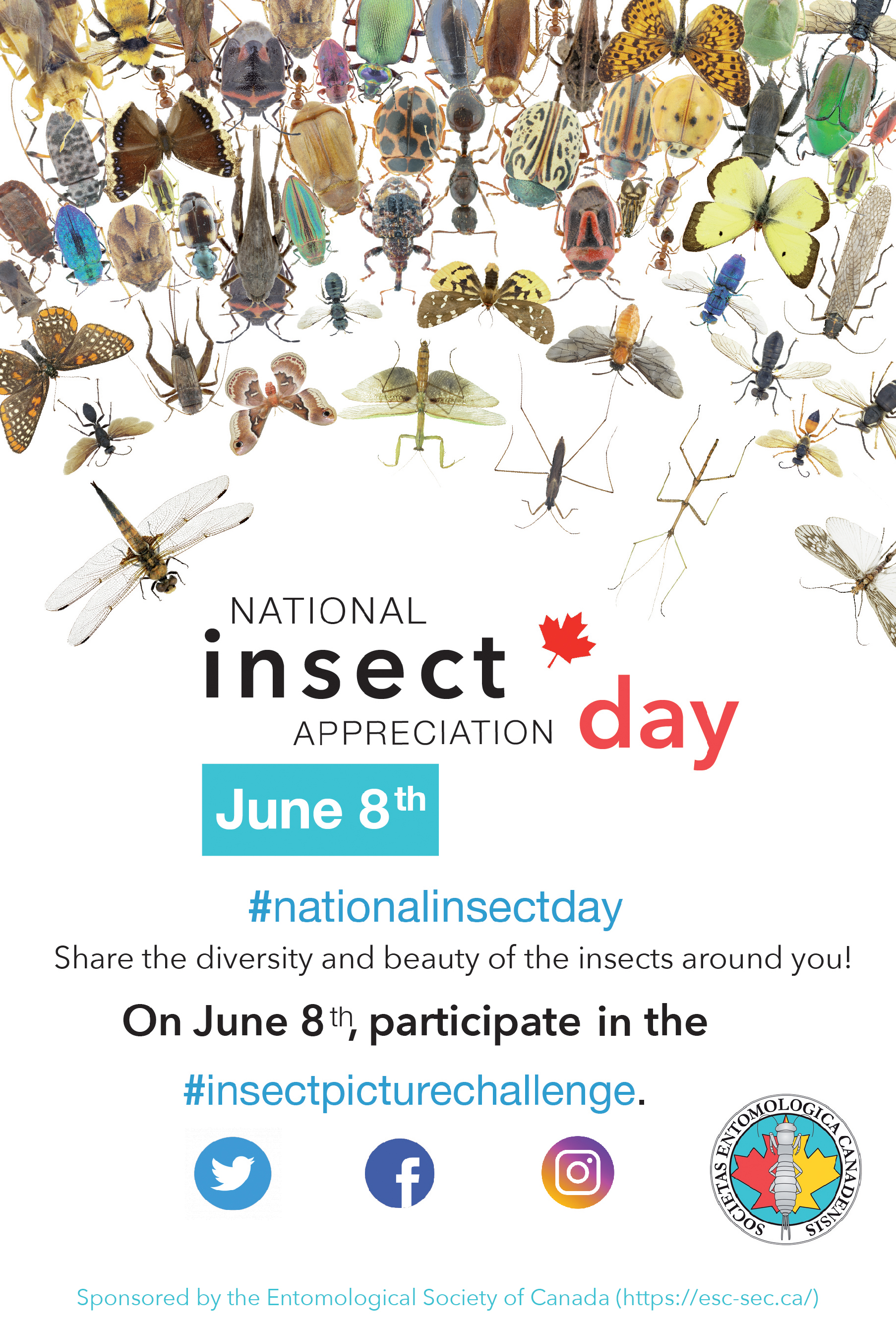 Education and Outreach – Entomological Society of Canada